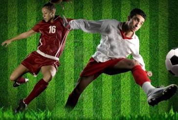 Soccer teams see success this season