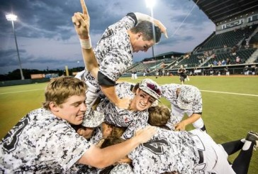 Argyle baseball wins first state title
