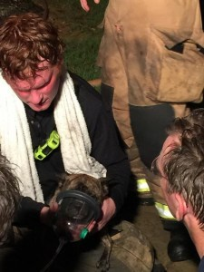 A firefighter helps a puppy breathe using a canine oxygen mask after the dog was pulled from a burning house Friday evening in Lantana.