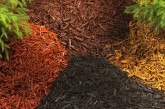 Mulch: The climate barrier