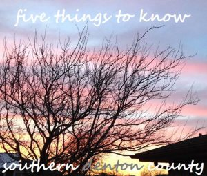 5 things flag sky