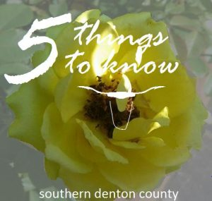 5 things to know 29