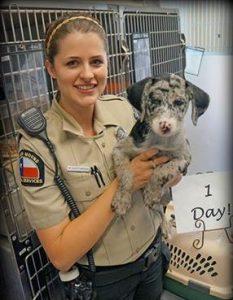 Photo Courtesy: Facebook/Flower Mound Animal Adoption Center.