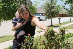 Krista Middleton with son, Nolan, inspect roses in her front yard for signs of Rose Rosette Disease.