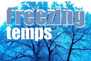 Freeze warning issued for Denton County