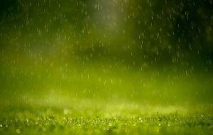 green rain gfx