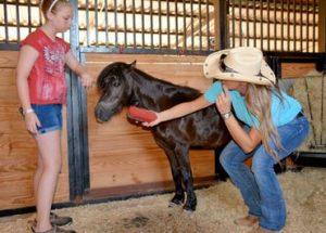 Photo Courtesy: Ranch Hand Rescue