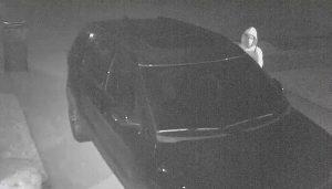 lantana vehicle burglary suspect