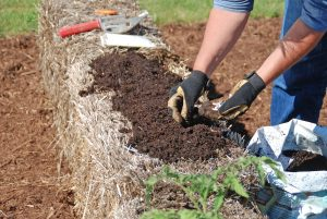 Create a planting bed for seeds by covering the straw bale with a one- to two-inch layer of planting mix. (Photo: Melinda Myers, LLC)