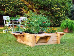 Raised bed gardens with benches make it easier to plant, maintain and harvest. (Photo credit: Bonnie Plants)