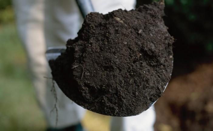 Gardening: Topsoil Fertility