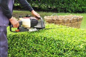 shrub hedge electric trimmer
