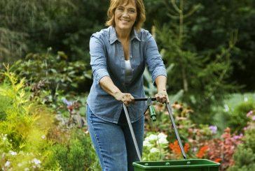 Gardening: Fairy dust for veggies