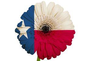 texas-flower