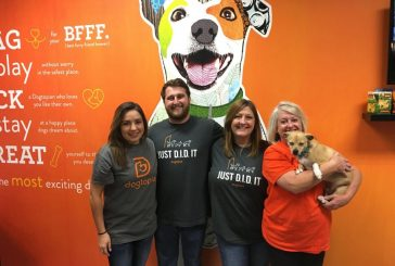 Pup Paradise: Dogtopia offers home away from home