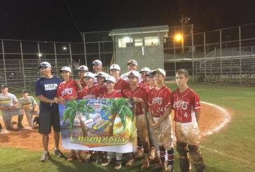 Flower Mound Little League team wins World Series