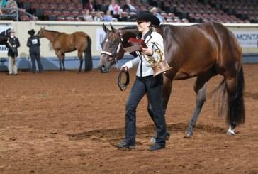 Argyle teen wins quarter horse competition world championship