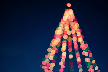 Mark your calendars for the Festival of Trees and Lights in Lewisville
