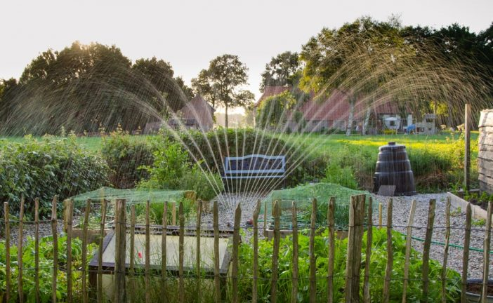 New 'Water My Yard' app provides watering recommendations