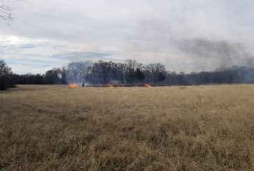 Firefighters douse 8-acre grass fire in west Flower Mound