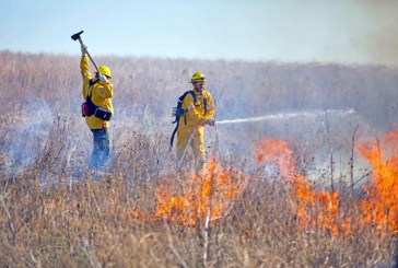 Prescribed burn on The Flower Mound cut short