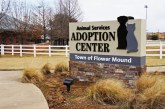 Flower Mound Animal Adoption Center gets new sign for better visibility