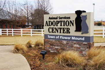 Low-cost pet vaccination clinic to be held Saturday in Flower Mound