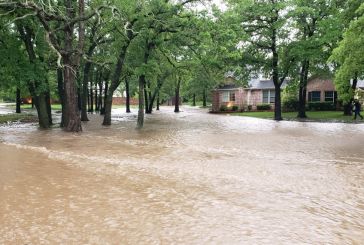 Flash flooding swamps Argyle neighborhood