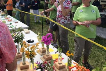Denton County fruit, vegetable, herb and flower show set