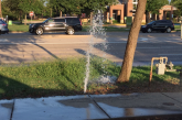 Maintain sprinkler systems to save water, promote healthier lawns