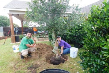 With new landscaping, Kyle's Place to host open house