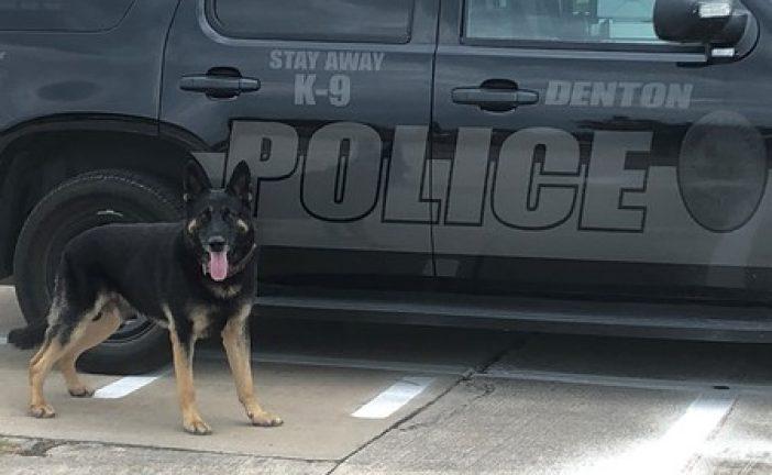 Denton PD to hold Citizen's Police Academy