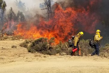 Flower Mound firefighters return from California wildfires