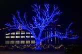Flower Mound's Christmas Tree Lighting Ceremony set for Saturday